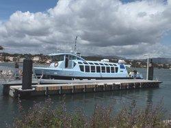 Transports Maritimes Toulonnais