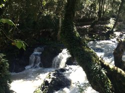 Cascadas Tuliman