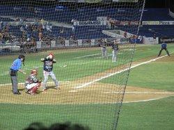 Venados Baseball Club