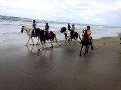 Costa Rica Equestrian Vacations - Day Programs