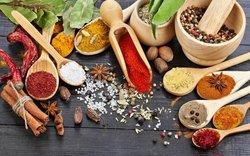 Salt n Spice