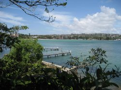 Rose Bay to Nielsen Park Walk