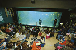 Aquarium de Lyon