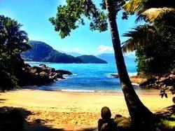 Secret Beach (84689308)