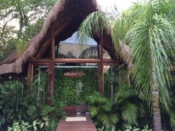 rainforest spa...you get all this for youself...reasonable price