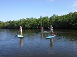 Suncoast Paddle & Fitness