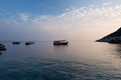 Calypso Diving - Koh Tao