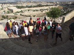 Goldcarpet Israel tours