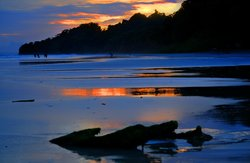 Divine Sunset (85130477)