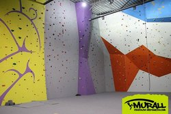 Murall Rock Climbing