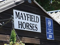Mayfield Horse Riding Stables