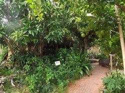 Botanica Spa