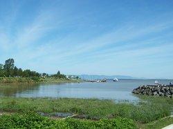 Le Jardin des Souches et la Promenade du Bassin