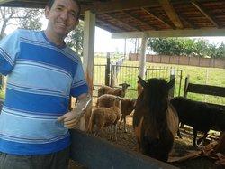 Parque de Exposicoes Governador Ney Braga