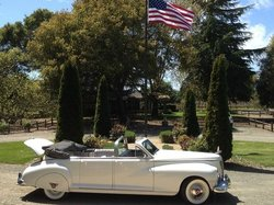 Classic Convertible Wine Tours
