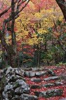 Keisoku-ji Temple