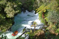 Cruise Tours Tauranga