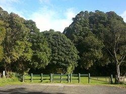 Ratapihipihi Scenic Reserve Walk