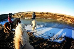 Hestheimar - Riding tours