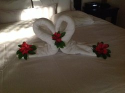 amazing towel creations daily