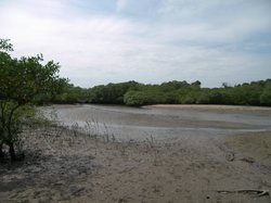 Playa Las Comadres