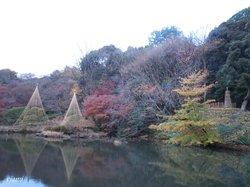 New Edogawa Park