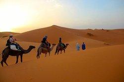 Sahara Magic Day Tours