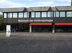Anthropological Institute & Museum