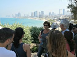 Zaatar - Israel Walking Tours
