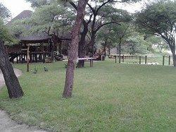 Ndurukoro Camp & Chalets