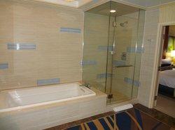 1 Bedroom Penthouse