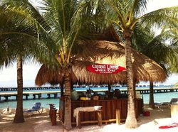 Coconut Lounge Juice Bar Cozumel