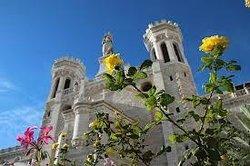 Notre Dame (Jersualem)