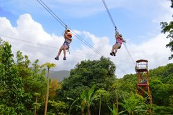 Rainforest Zipline Park