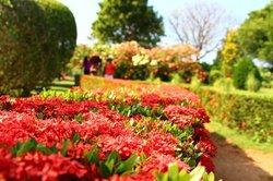 Mirijjawila Botanic Gardens