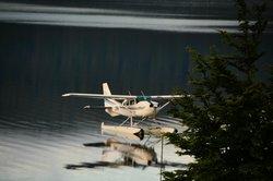 Wings & Water