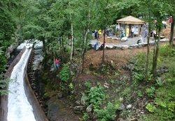 Hawk Lake Log Chute