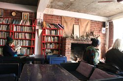 Book shelf and the fireplace in the corner