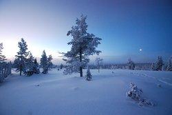 Winterwonder Land