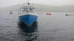 Wild Skye Boat Trips