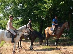 Saint-Céré Equitation