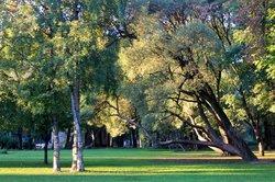 Tauride Garden (Tavricheskiy Sad)