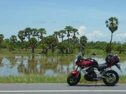 South Thailand Motorbikes - Day Tours