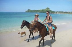 Island Riders