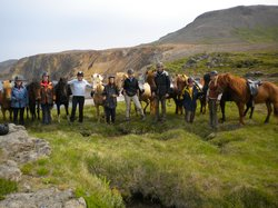 Skorrahestar - Riding Tours