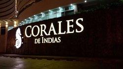 Corales de Indias