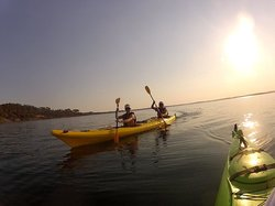 Pioneer Kayaking- Tours