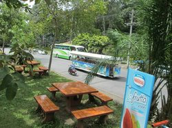 Singora Tram Tour