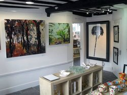 The Moreton Gallery