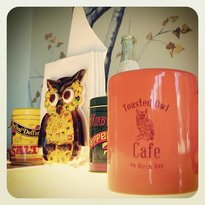 The Toasted Owl Cafe